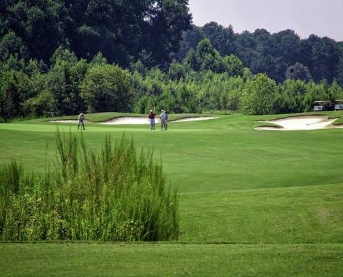 DSC_blp_golf1