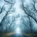 haunted-roads-in-north-carolina-belmot-lake-preserve
