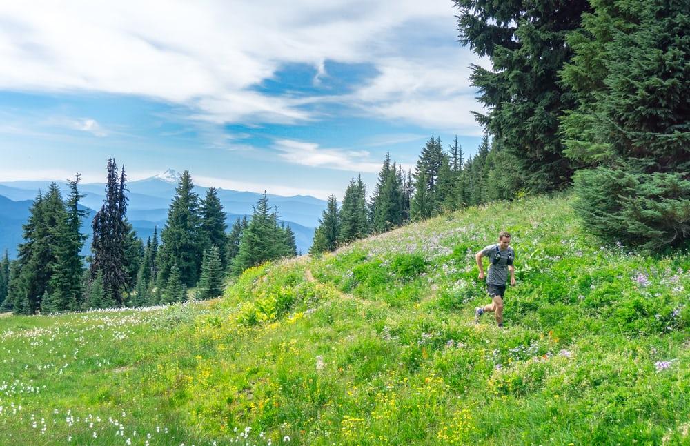 hikes-in-north-carolina-belmont-lake-preserve