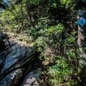 best-campsites-in-nc-belmont-lake-preserve