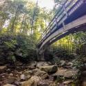 camping-in-north-carolina-belmont-lake-preserve